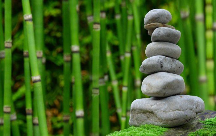 bisogni equilibrio